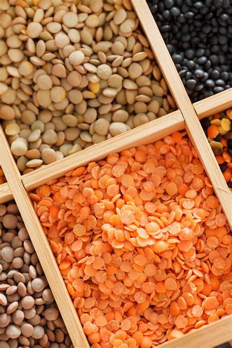 lentils  health benefits recipes storage sprouting