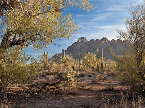Photos: See the sweeping American landscapes under review ...