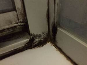 Schimmel In Der Dusche Entfernen : dusche reinigen mit hausmitteln klappt auch bei schimmel tipps pinterest cleaning hacks ~ Buech-reservation.com Haus und Dekorationen