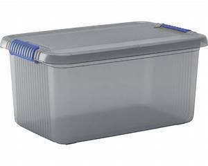 Aufbewahrungsboxen Kunststoff Mit Deckel : aufbewahrungsbox chris l mit deckel bei hornbach kaufen ~ Markanthonyermac.com Haus und Dekorationen