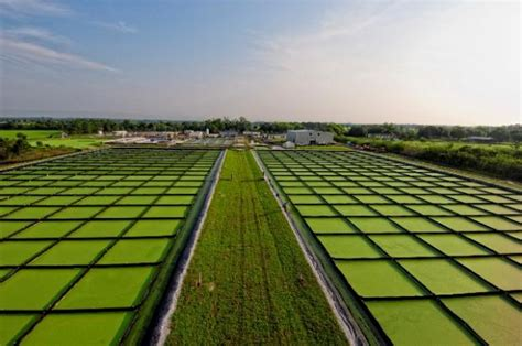 Применение и перспективы развития различных видов альтернативных источников энергии