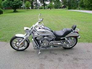 Harley Davidson Vrsca 2003 Wiring Diagrams
