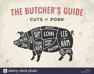 Cut Of Meat Set  Poster Butcher Diagram  Scheme And Guide