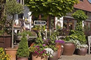 galerie blumen franzen floristik und gartnerei in der With markise balkon mit tapete blumen vintage