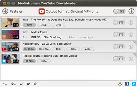 Resultado de imagen de MediaHuman YouTube Downloader 3