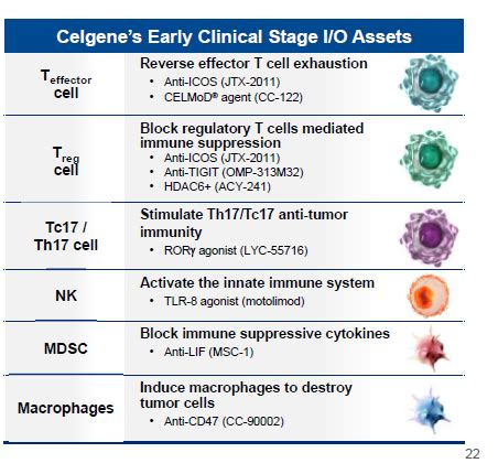 Is Celgene A Growth Or A Value Stock? - Celgene ...