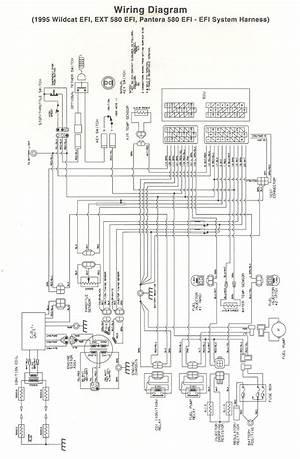 raptor 660 wiring diagram  26636archivolepees