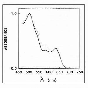 PDF Couplage D39un Acclrateur D39Electrons Et D39une