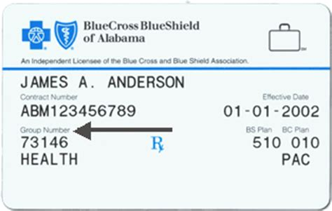 Coverage is through your employment (group insurance) submit to: Mobile: Blue Cross and Blue Shield of Alabama