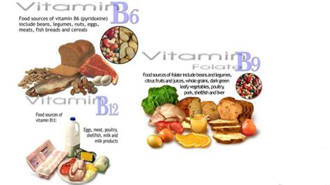 alimenti ricchi di acido folico e vitamina b12 attenzione all omocisteina studio medico perrone associati