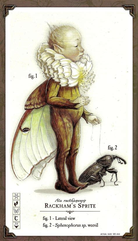 Image 010 Spiderwick Chronicles Wiki Fandom