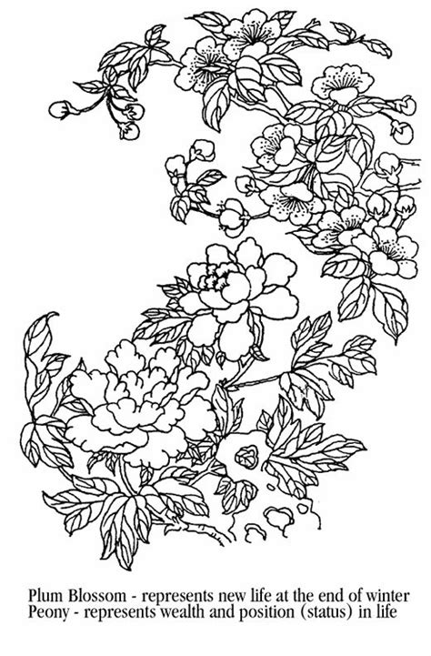 ume blossom clipart coloring page pencil   color