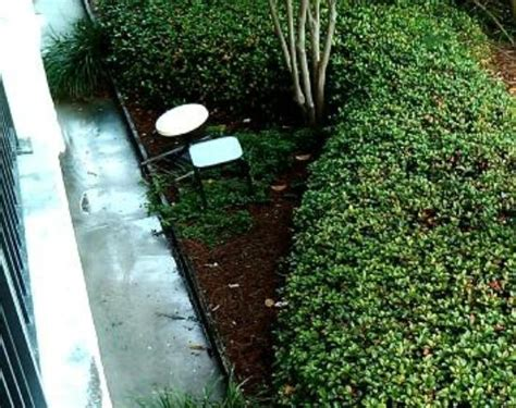 discarded patio furniture outside of room picture of