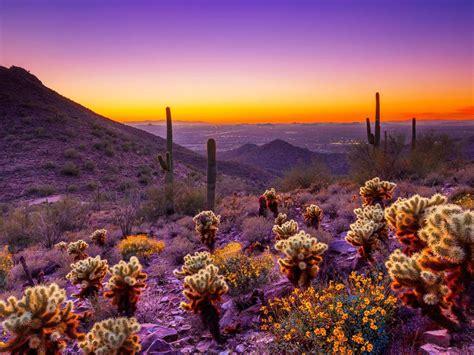 arizona sunset desert area orange sky clouds desktop hd