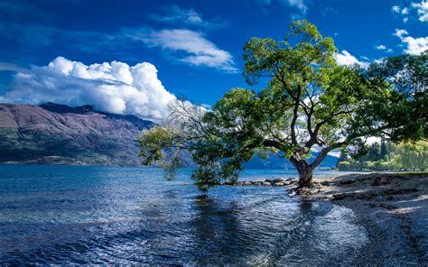 Milky Way Background Hd Lake Wakatipu Queenstown New Zealand Landscape Wallpaper Hd Wallpapers13 Com