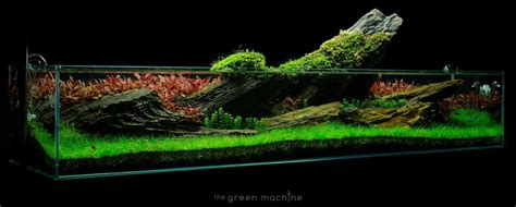 Green Machine Aquascape by The Green Machine On Quot Crimson Sky Aquascape By