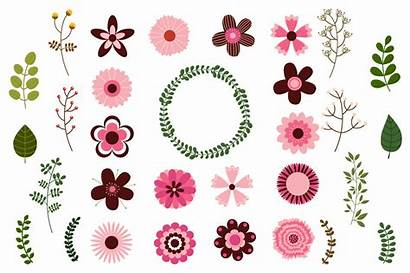 Clip Single Flowers Clipart Floral Elements Mod