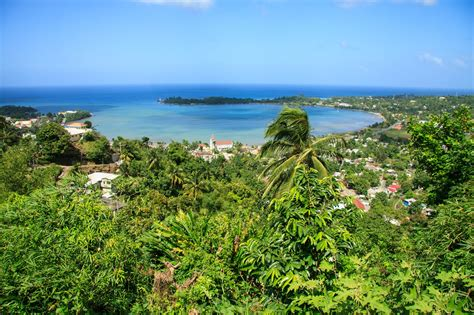 Jamaika: Erlebt die Naturschönheit in der Karibik