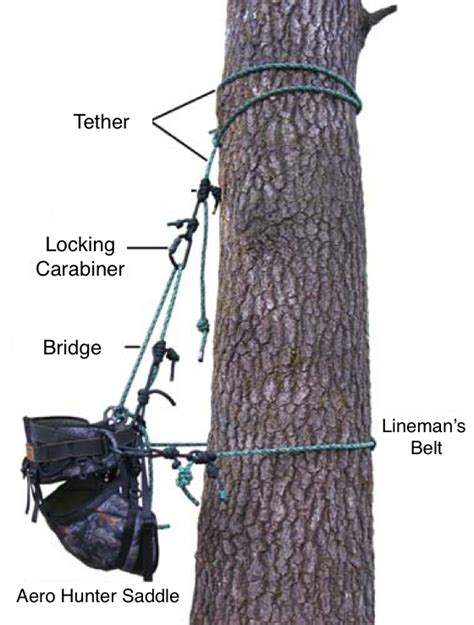 saddle hunting tree hunters bowhunting works thing mobile system