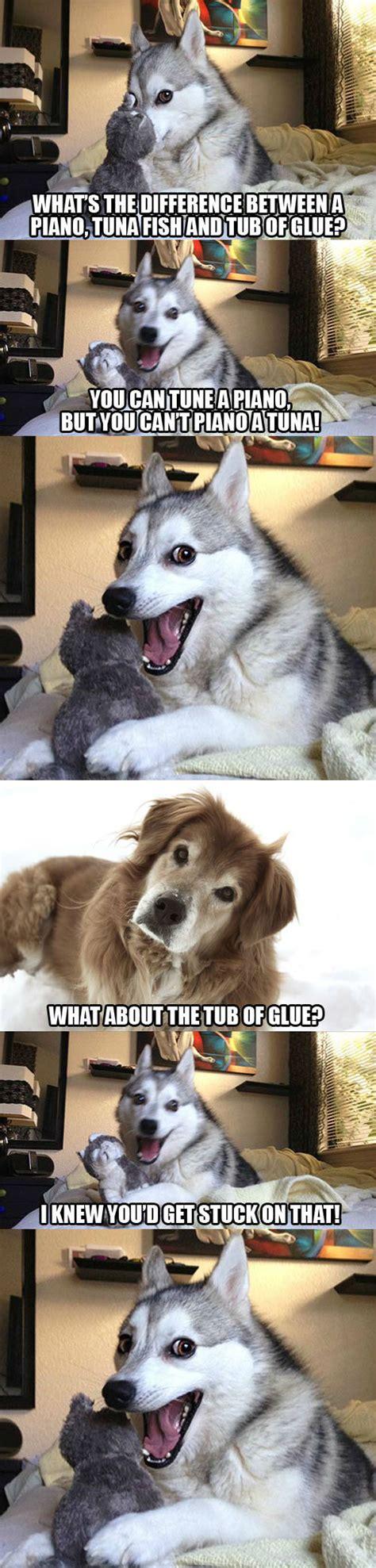 Bad Dog Meme - dog pun memes