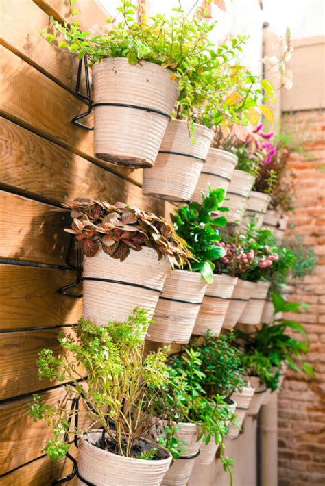 plants on patio 35 patio potted plant and flower ideas creative and lovely photos