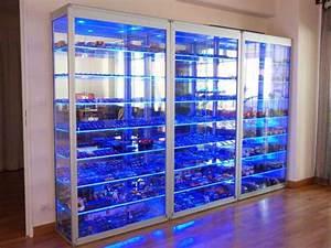 Vitrine En Verre Pour Collection : collectie vitrines vitrina ~ Teatrodelosmanantiales.com Idées de Décoration
