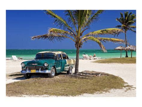 Beach Palm Trees Cars