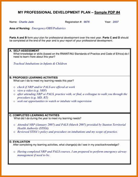 individual professional development plan sample