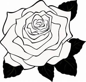 gaeroladid: White Rose Outline Images