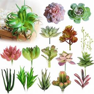 Various Artificial Succulent Plants Lotus Landscape