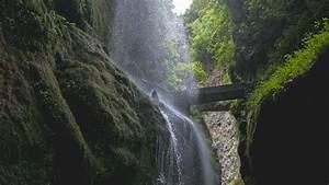 Download, Wallpaper, 1920x1080, Waterfall, Rocks, Trees