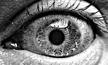 black  white photography tips dps
