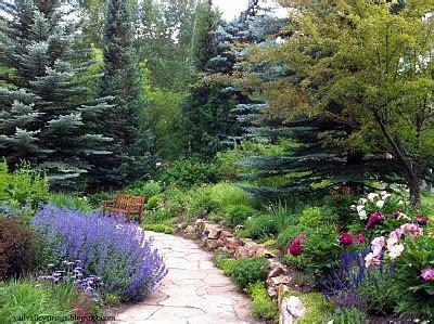 gardens at vail betty ford alpine gardens in vail co gardens