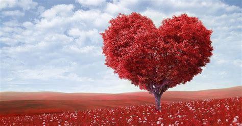 kumpulan ucapan anniversary romantis  penuh cinta alfabetis