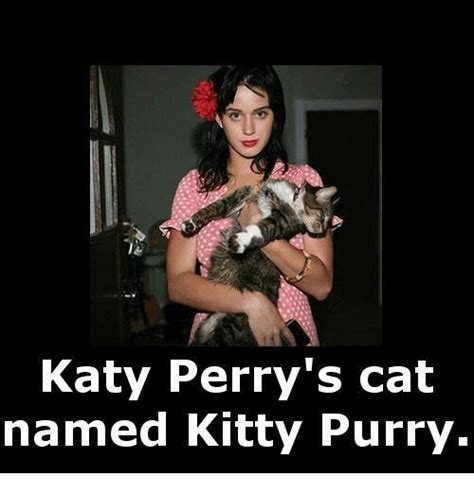 Katy Perry's Cat Named Kitty Purry