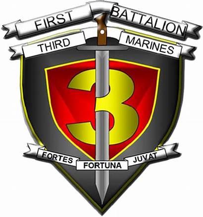 Marines Battalion 3rd 1st Usmc Transparent Wikipedia