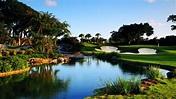 Boca Raton Resort & Club, A Waldorf Astoria Resort ...