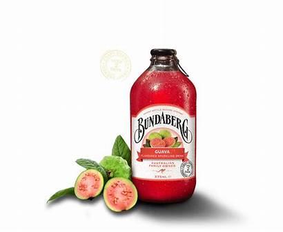 Bundaberg Guava Drinks Australian Popular Sodas 375ml