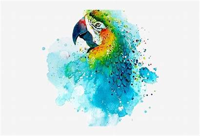 Watercolor Animal Easy Painting Transparent Pngkey