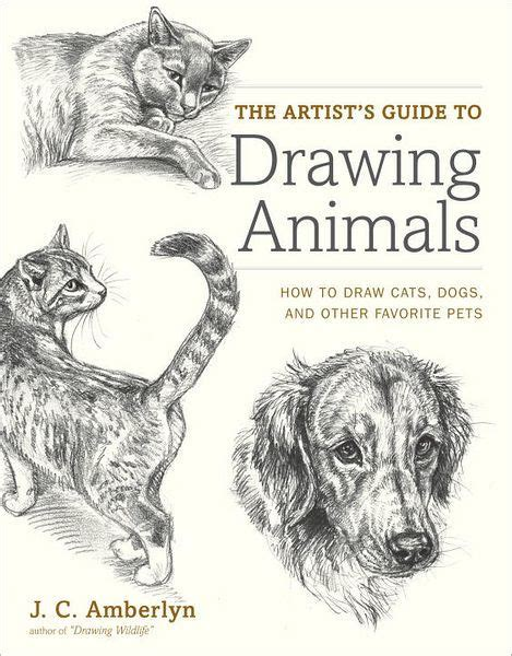 artists guide  drawing animals   draw cats