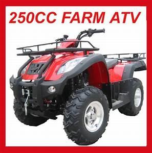 China Eec 250cc Manual Transmission Atv Mc-373