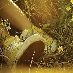 sunny, beautiful, converse, cute - image #684487 on Favim.com