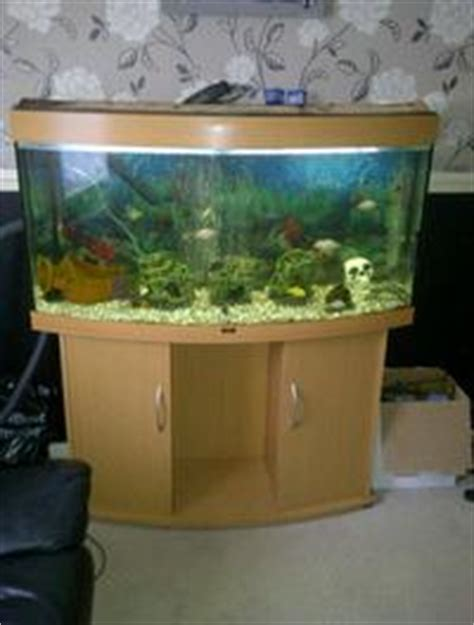 aquarium juwel 200 litres 4ft bow front 260 litre juwel fish tank 163 250 at aquarist classifieds