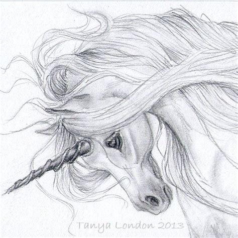 realistic unicorn drawings unicorn drawing  pencil