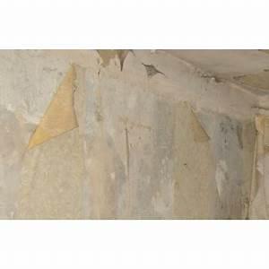 Comment Coller Du Papier Peint : enlever du papier peint rapidement 28 images poser du ~ Dailycaller-alerts.com Idées de Décoration