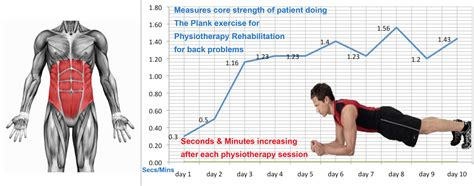 Physiotherapy With Electro Muscle Stimulation Restores