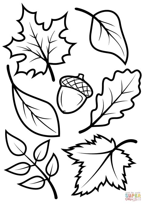 Coloring Leaves fall leaves and acorn coloring page free printable