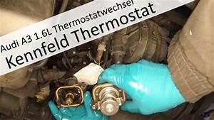 Kennfeldgesteuertes Thermostat Wechseln Am Audi A3 1 6l