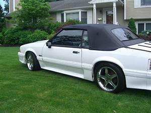 1993 Ford Mustang Wiring Diagram  1993 Mustang Gt