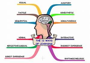 Classroom Freebies Too: Multisensory Teaching: How to ...